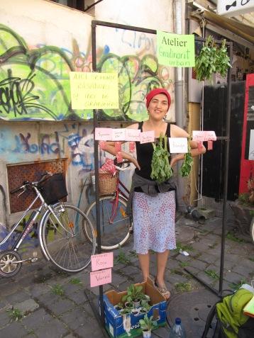 Seminte, rasaduri si verdeturi de Stanciova (si nu numai) si la Timisoara / Seeds, plants and green stuff from Stanciova (and not only) for the people in Timisoara