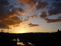 Pe alocuri nu noroi, dar ce frumos se reflecta cerul :) / Full with mud sometimes but what a beautiful sky reflection :)