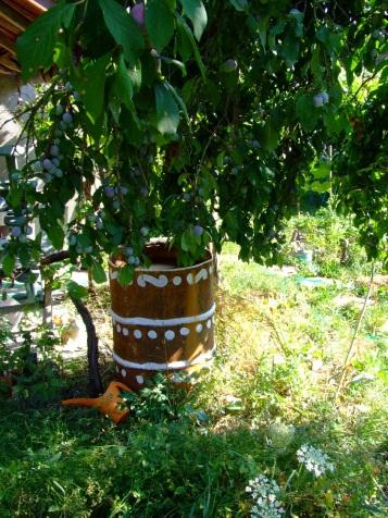 Butoiul de apă (o captează de pe acoperiș când plouă. când nu, îl umplem din fântână)