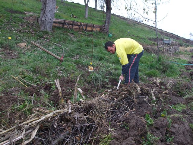 Andrew (AU) digging swales. In the background the terraces made by Victor and Todd.