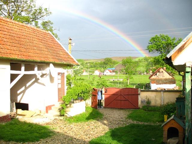 aaa rainbow