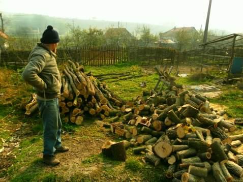 Wood pile...