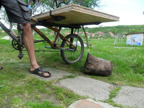 cargo-bike care care aproape orice